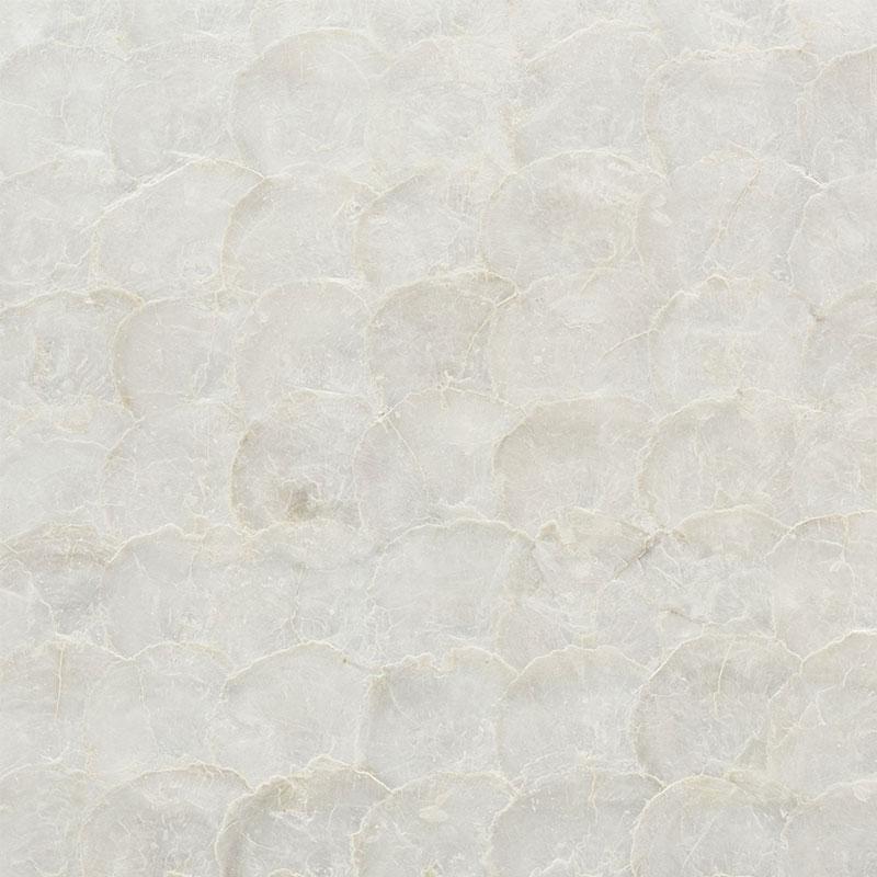 Abalone - pearl schumacher wallpaper