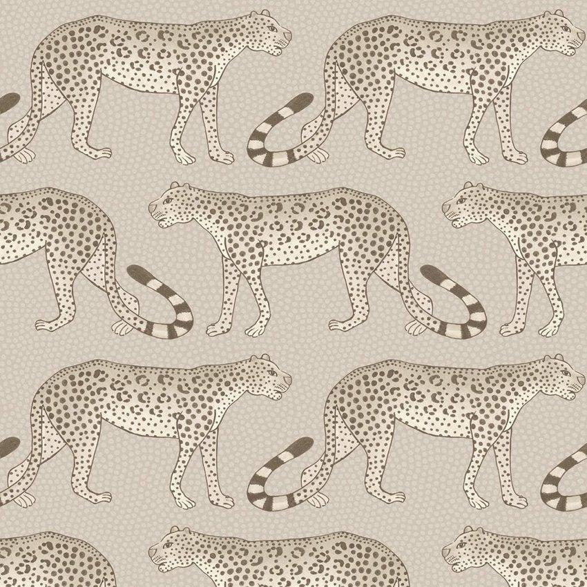 Leopard Walk - stone